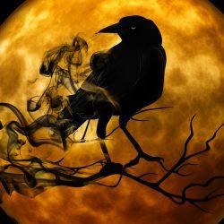 ¿A Qué Tiene Miedo Cada Signo Zodiacal?