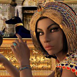 Simbolismo de la Reina de Bastos en el Tarot